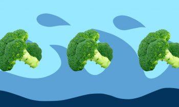 Brokoli Nasıl ve Ne Kadar Sürede Pişirilir?
